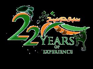logo 22 años
